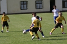 D-Jugend Vizemeister Landespokal 2010